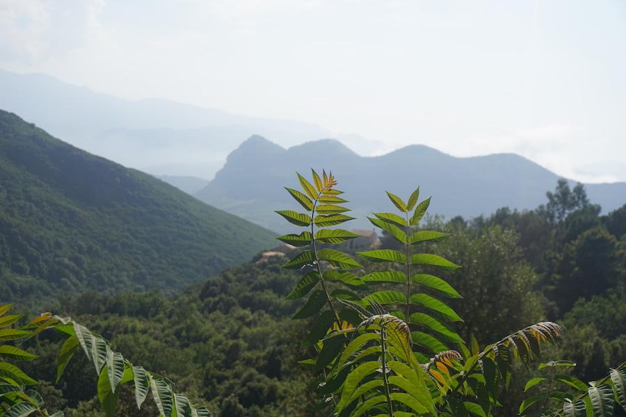 Corsica Road Trip - From Calvi to Bastia